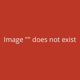 Apple Macbook Pro 13 A1706 A1708 LCD Display mit Top Cover Silber